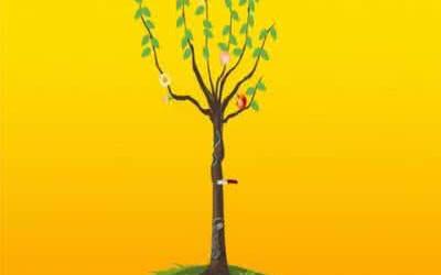 婚姻树的小常识你了解多少?