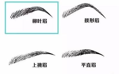 柳葉眉 - type of eyebrows mentioned in the chapter
