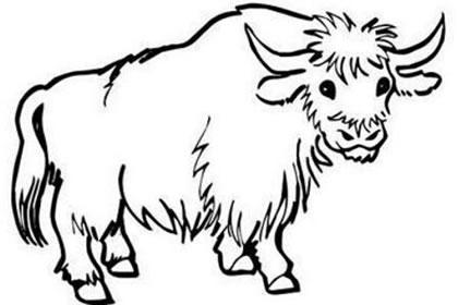 牛与人图片大全可爱