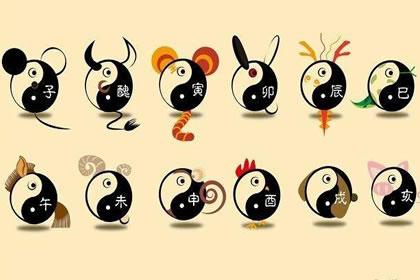 十二生肖 生肖分析    根据十二生肖的知识,其实生肖和五行都是有联系