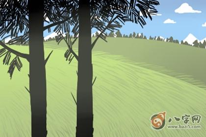 陽臺放綠色植物
