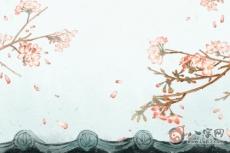 屋后種桂花樹影響風水嗎
