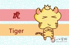 属虎的怕什么 生肖虎人最怕什么生肖