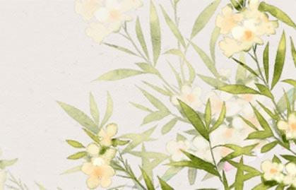 植物1-(2)