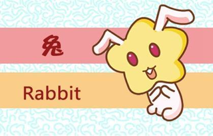 1_兔 (5)