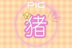 单身的属猪人在2021年吉星庇佑会开始新的感情生活