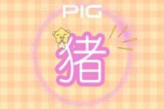 1995年属猪是什么命 五行属什么