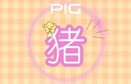 1995年属猪的最佳配偶