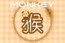 80年金猴一生命运如何 事业稳定顺利中年财运危机