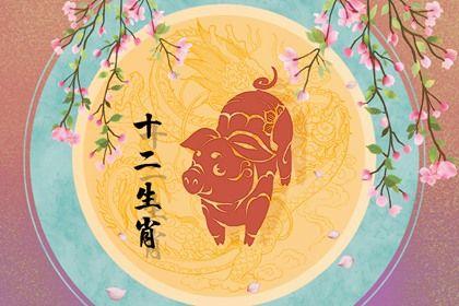明年1983年属猪的命运怎么样 合太岁运势上涨