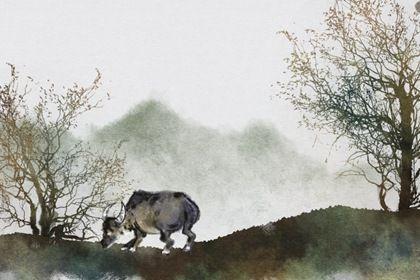 属牛1973年四十六以后命 早年辛苦晚年享福