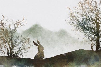 属兔人一辈子的婚姻与命运 爱真的需要勇气