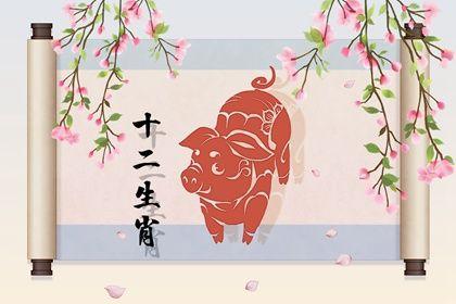 71年的猪今年的运势 事业提升偏财获益多